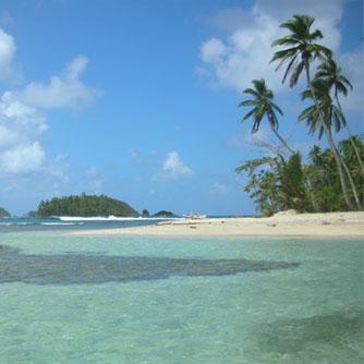 Caribbean Island Experience (Beach & Snorkeling)