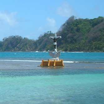 Caribbean Island Experience